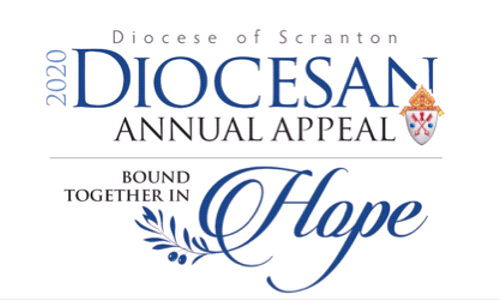 Diocesan Annual Appeal - Bound Together in Hope